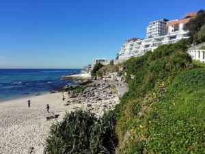 a picture of clifftop at Bondi Beach